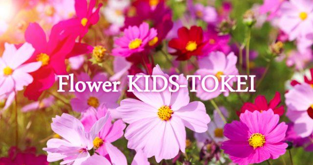 「Flower KIDS-TOKEI ~cosmos~(キッズ時計)」キッズモデル募集