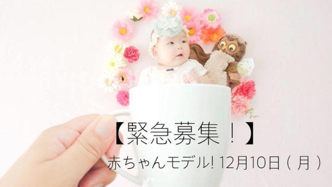 【宮城】「おひるねアート・家族写真  moco-もこ」おひるねアート撮影赤ちゃんモデル募集