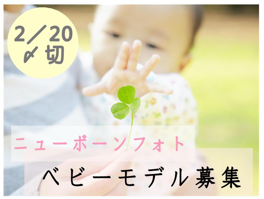【福島】「ニューボーンフォト郡山福島」ニューボーンフォトのベビーモデルの募集