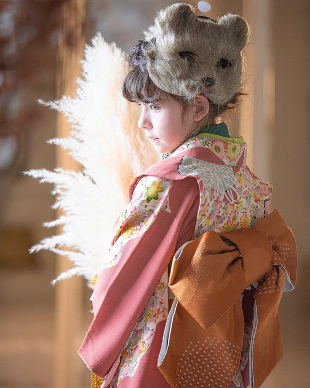 【愛知】写真館「スタジオノーブレム」着物撮影キッズモデル募集